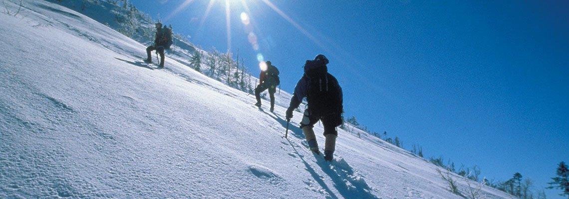 Climbers on snow